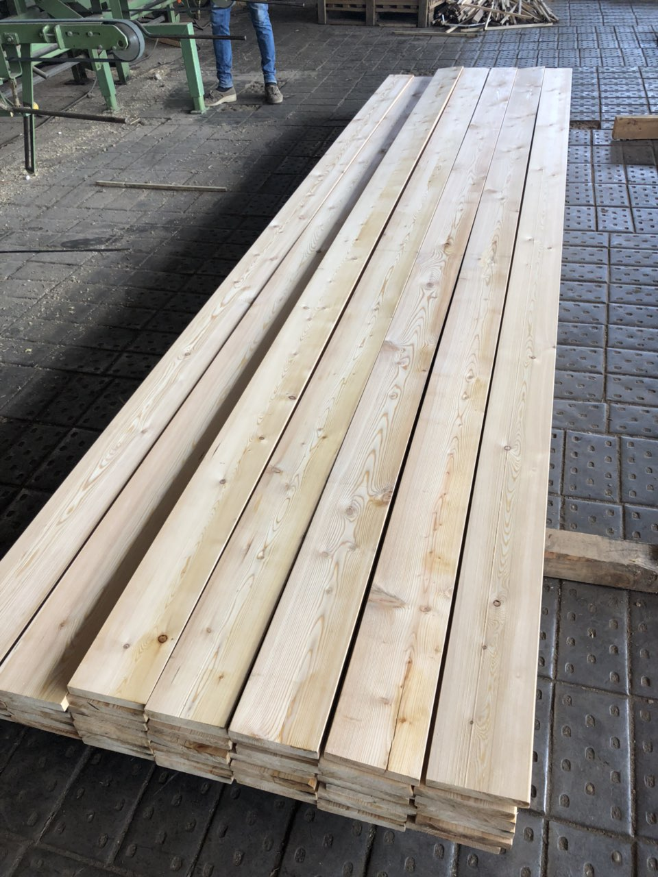 Siberian Larch Lengths